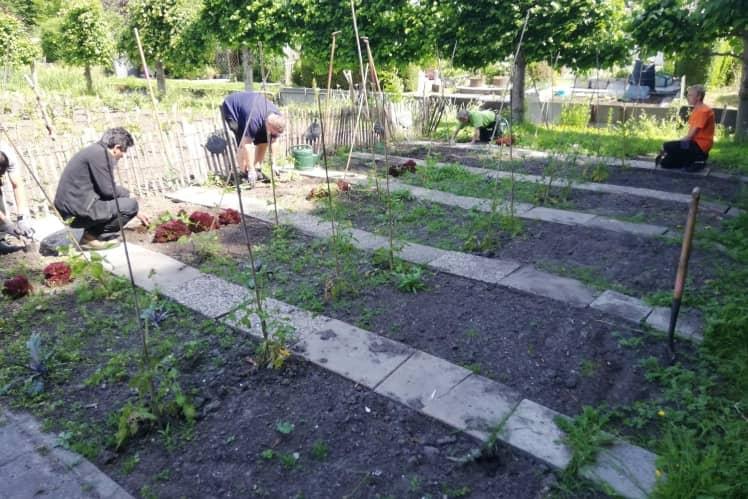 Leerlijn tuin groen begeleid werken